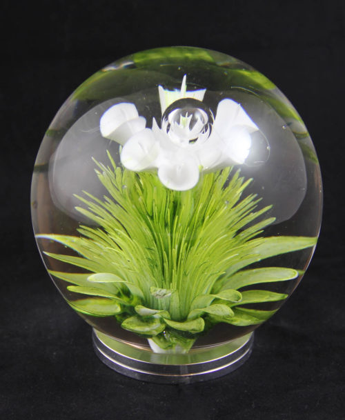Presse papier, fleur blanche