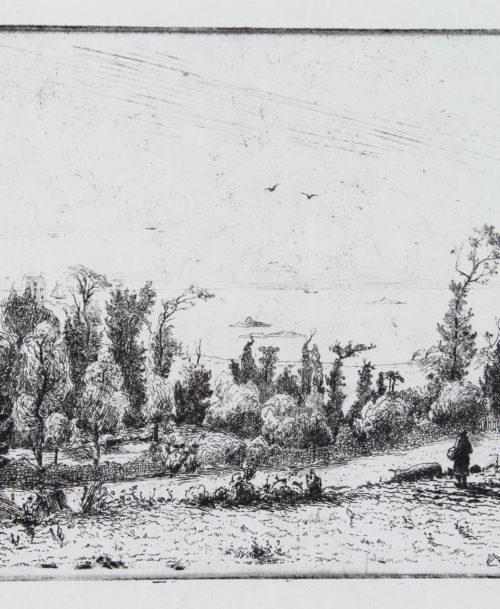 Le vallon de Portrieux